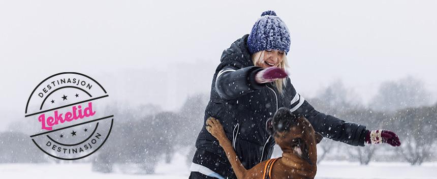 Dame leker med hund