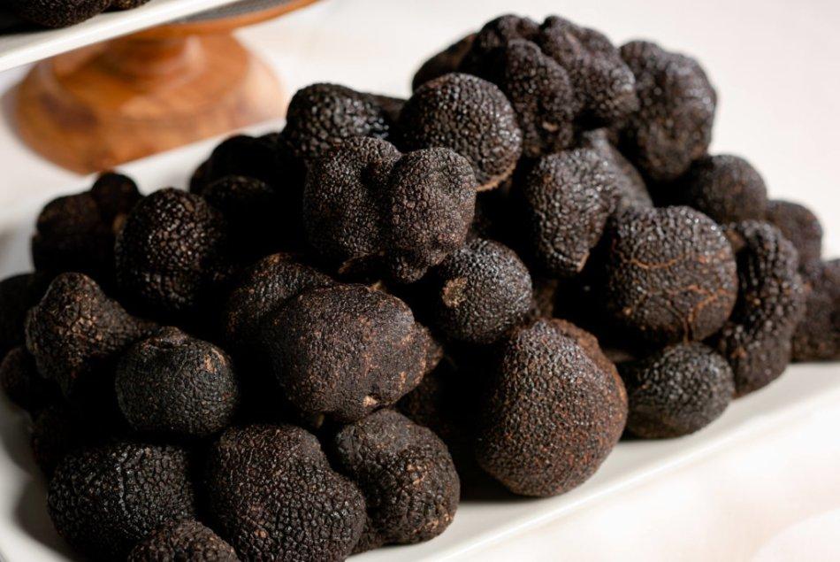 Buy-Fresh-Truffles-