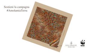 #AmolamiaTerra