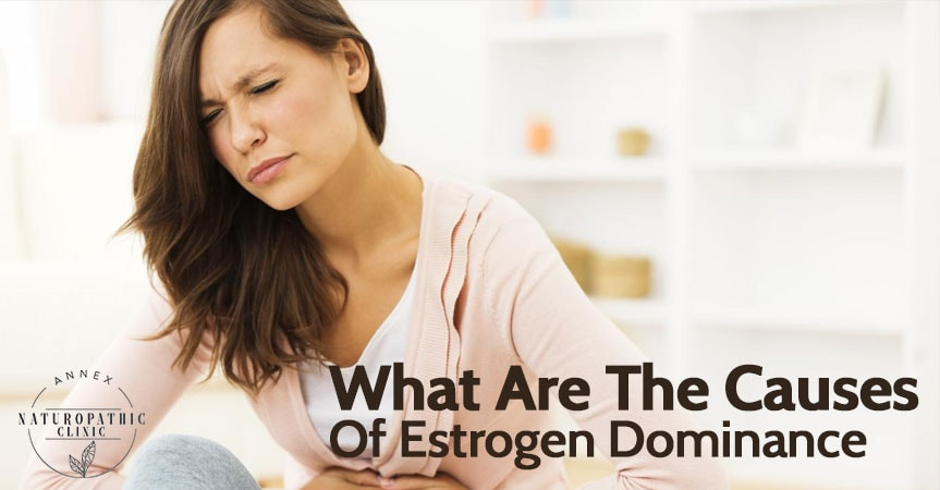 The Causes of Estrogen Dominance | Annex Naturopathic Clinic Toronto Naturopath