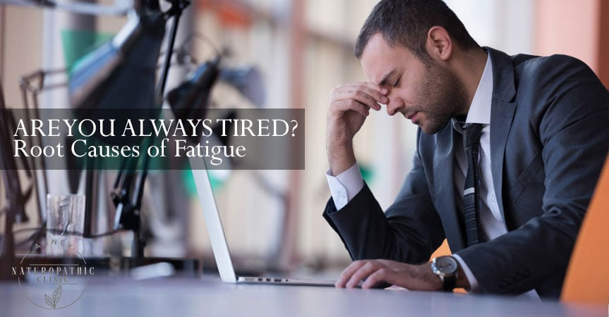 The causes of fatigue | Annex Naturopathic Clinic | Naturopath Toronto