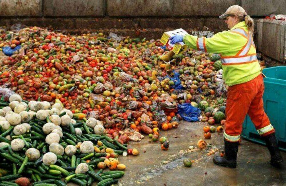'Stop and go' causato dal Covid-19 - Sprecati 1,1 milioni di tonnellate tra cibo e vino