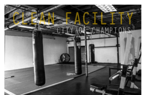 Mixed Martial Arts Gym