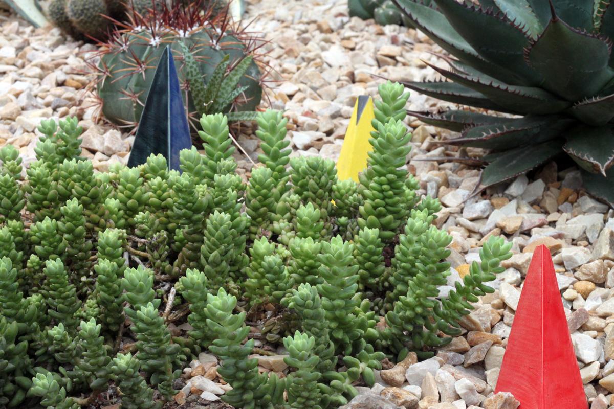geometric planter installation in Chicago Garfield park conservatory succulent cactus. art city of giants cityofgiants graffiti urban plants nature install public