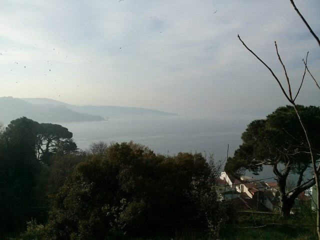 A view of Bosphorus