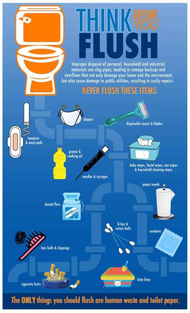 Think Before You Flush PDF