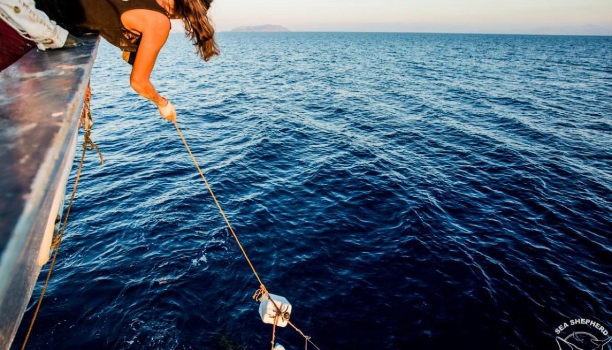 «tuteliamo-il-mare»:-davines-e-sea-shepherd-insieme-per-le-isole-eolie