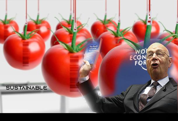"""preparati-per-il-""""plate-reset"""",-pianificato-dalla-rockefeller-foundation-ed-eseguito-dal-world-economic-forum"""