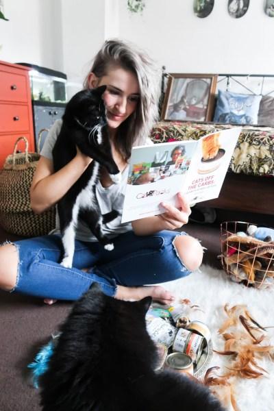 Feline Foodology: The NEW Fit Feline Taster Pack by CatPacks