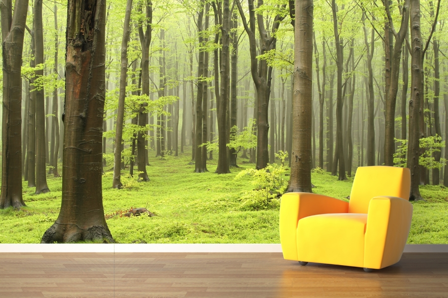 Searching Custom Wall Graphics or Wall Murals in the East