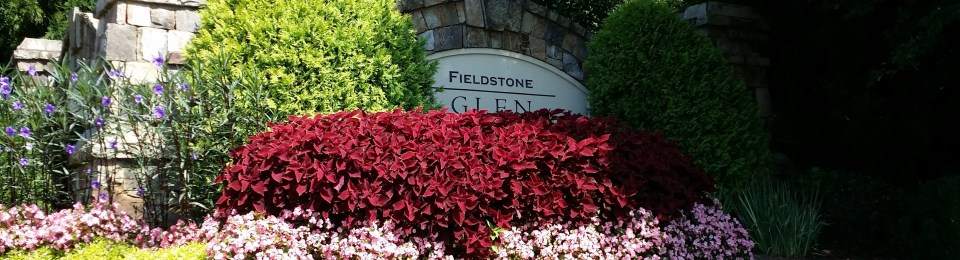 Cumming Georgia Subdivision Fieldstone Glen