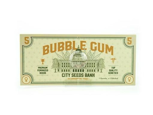 Bubble Gum Feminised