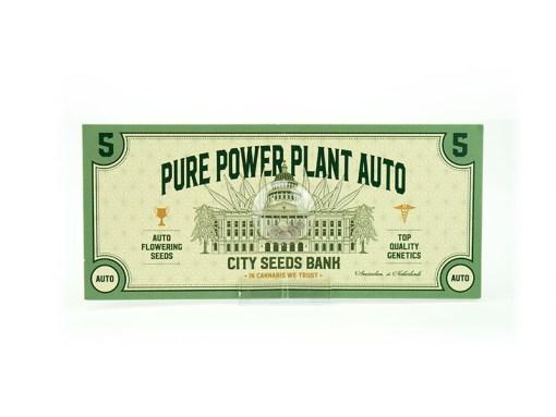 Power Plant Auto