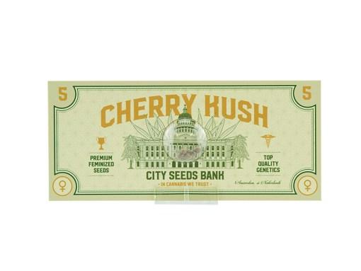 Cherry Kush Feminized