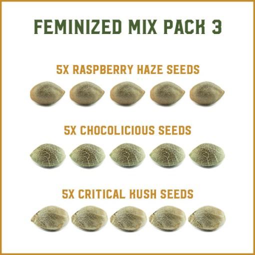 Feminized Mix Pack 3