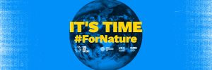 What's Happening on World Environment Day (5 June 2020)?