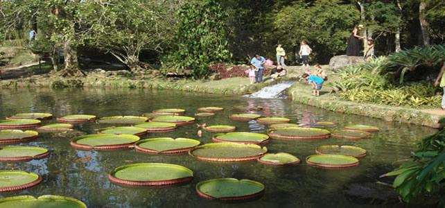 Passeio no Jardim Botânico e Floresta da Tijuca