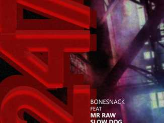 Bonesnack x Mr Raw x SlowDog x Bosalin x Hype MC – 247