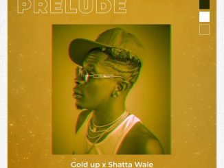 Gold Up Shatta Wale – Too Ugly