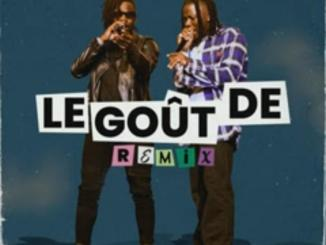 Remy Adan — Le Gout De Remix ft. Stonebwoy