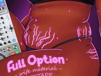DJ Ozzytee ft. Emmyblaq Efr — Full Option Wife Material Mix