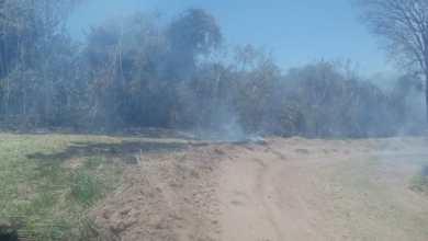 Photo of Se originaron varios focos de incendios de pastizales