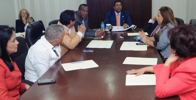 Comisión Permanente de la JCE de la Cámara de Diputados