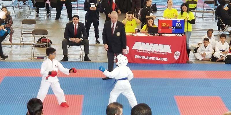 Artistas marciales dominicanos triunfan en Torneo Abierto Internacional en NY