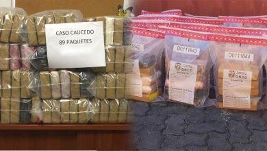 Photo of DNCD decomisa 91 kilos de cocaína en Puerto Multimodal Caucedo