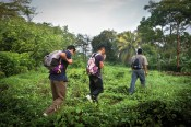 Para evitar las carreteras migrantes se aventuran en áreas de vegetación densa. La Arrocera (Chiapa) es una ruta famosa por ser escenario de asaltos y violaciones hechas por grupos nativos. Foto: Edu Ponces y Toni Arnau