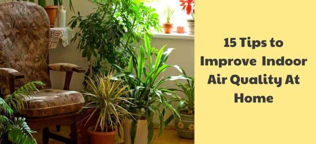 Improve Indoor Air Quality At Home.