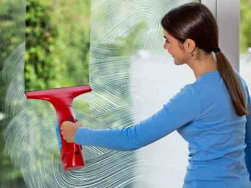 20 Essential House Cleaning Tools and Equipment With Price
