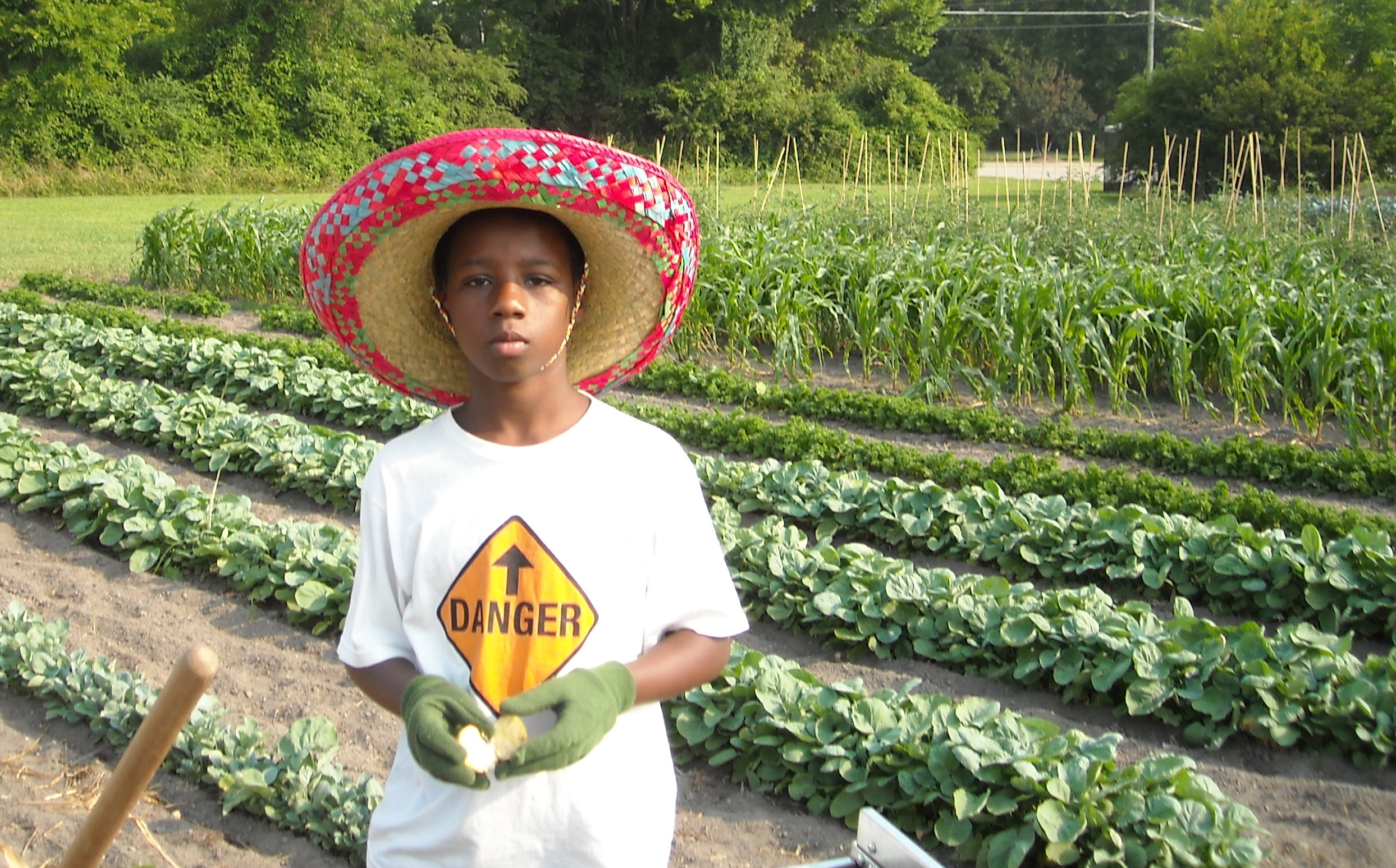 School Gardens Across The Nation And A Resource List For