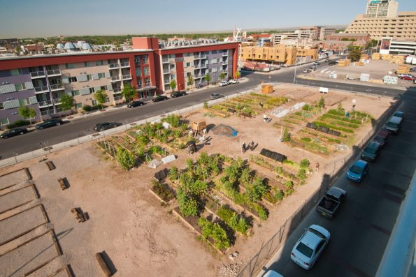 Urban agriculture is a way to get people involved with nature as well as fight hunger.