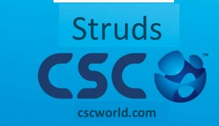 Struds : Software for designing concrete structures