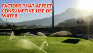 Factors affect consumptive use of water