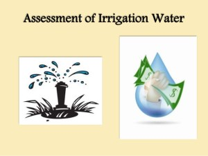Assessment of irrigation water