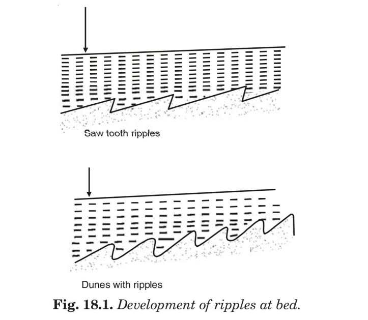 Development of ripples at bed.