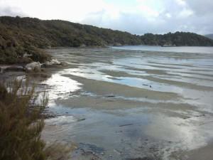 Stewart_Island_Oban_Mudflats