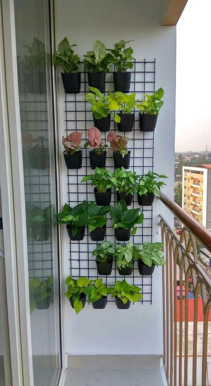 Utilize balcony vertical space for plants
