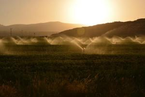 What is Irrigation Efficiency? Different Types of Irrigation Efficiency