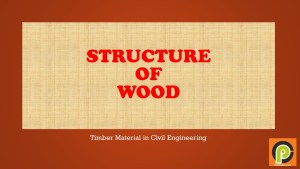 Timber – Structure of Wood   Type of Wood in Construction
