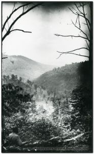 Cheat Mountain | Image Credit: CivilWarDailyGazette.com