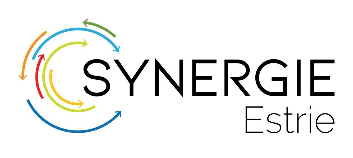 Synergie Estrie : premier bilan positif
