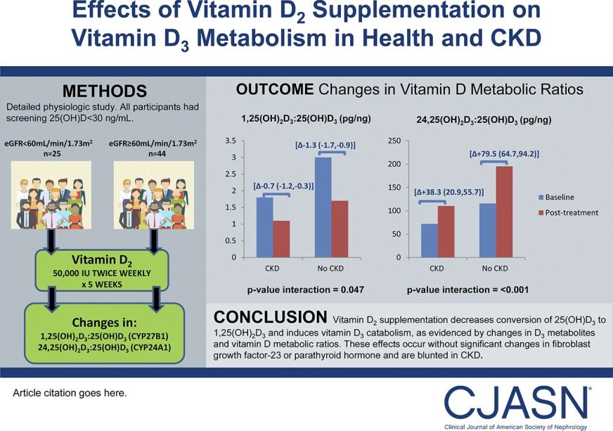 Effects of Vitamin D2 Supplementation on Vitamin D3 ...
