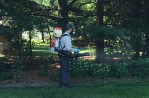 Mosquito spraying service