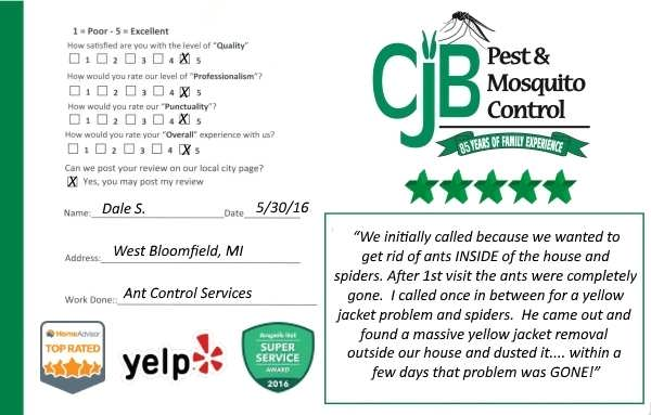 Ant Control Service, West Bloomfield, MI
