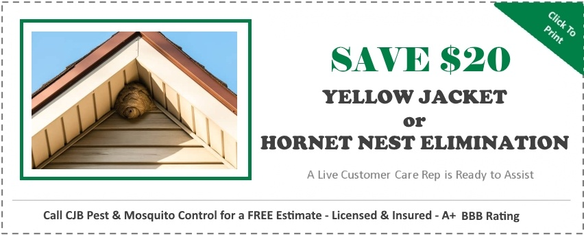Stinging Insect  Nest Coupon