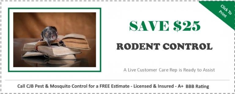 Rodent control coupon