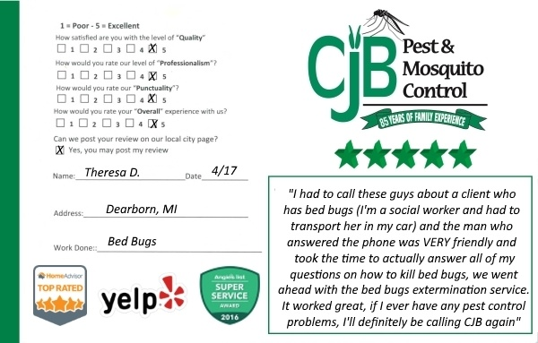 Bed Bug Exterminator Review